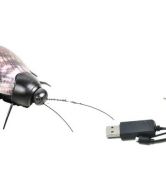 iPhone Controlled Cockroach - iBot